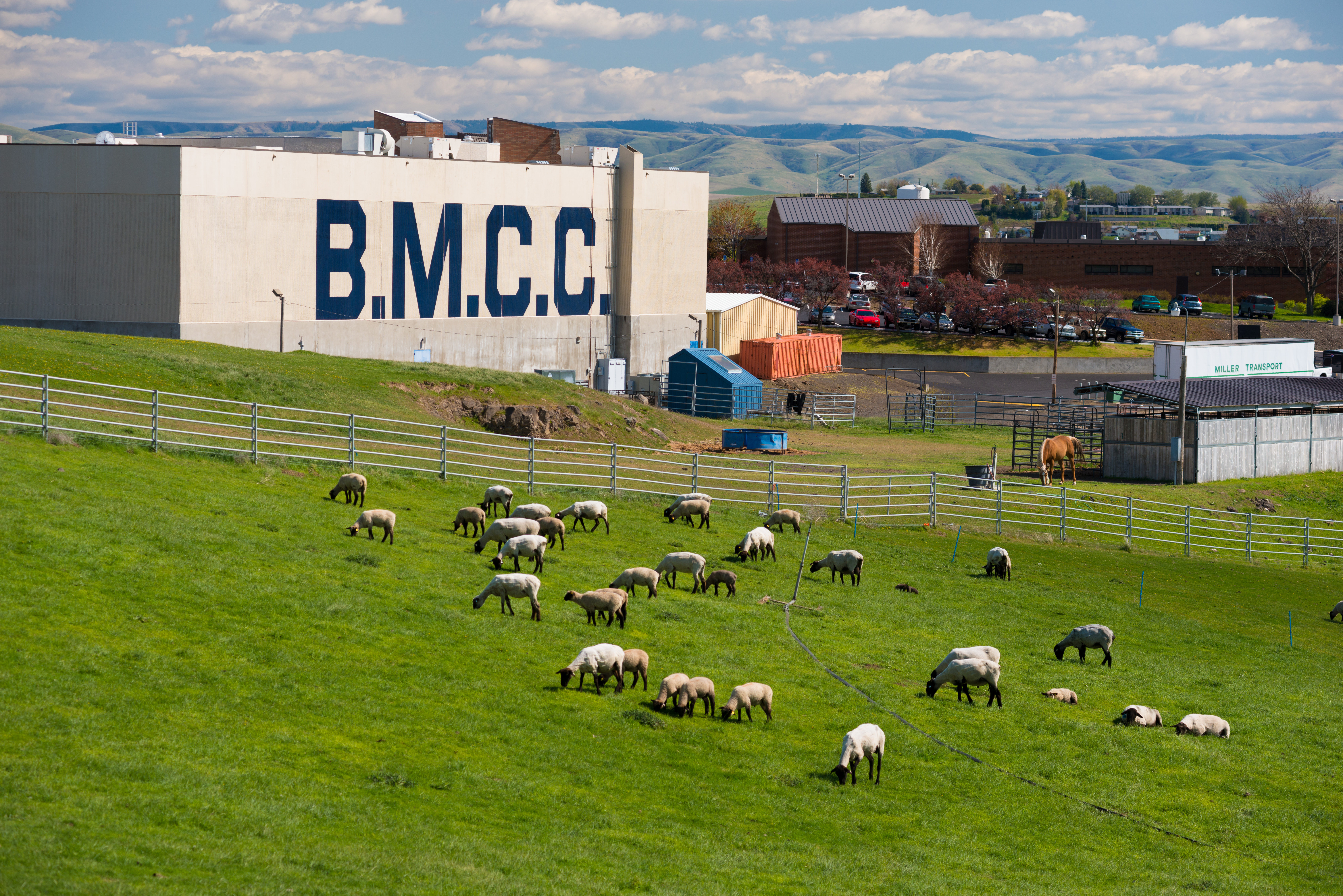 Lovely Blue Mountain Community College (BMCC) Is A Comprehensive Community College  Committed To Providing A Premier Learning Environment And Support For  Student ... Photo Gallery